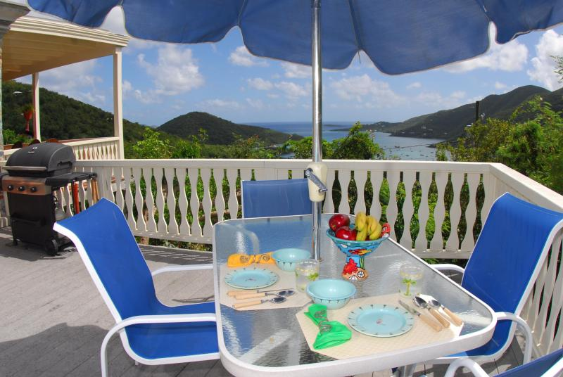 La Bella Villa: where you can choose sun or shade, always with great views! - La Bella Villa: Perfect views, breezes and charm! - Coral Bay - rentals
