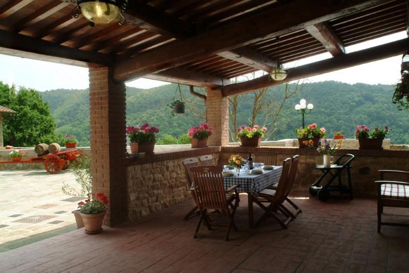 Villa il Castellaccio in Greve in Chianti Flat #3 - Image 1 - Greve in Chianti - rentals