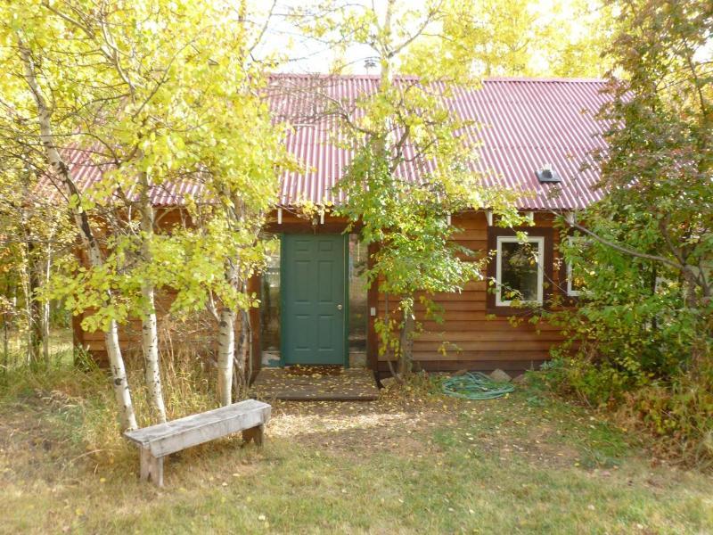 Aspen Creek Cabin - Image 1 - Pony - rentals