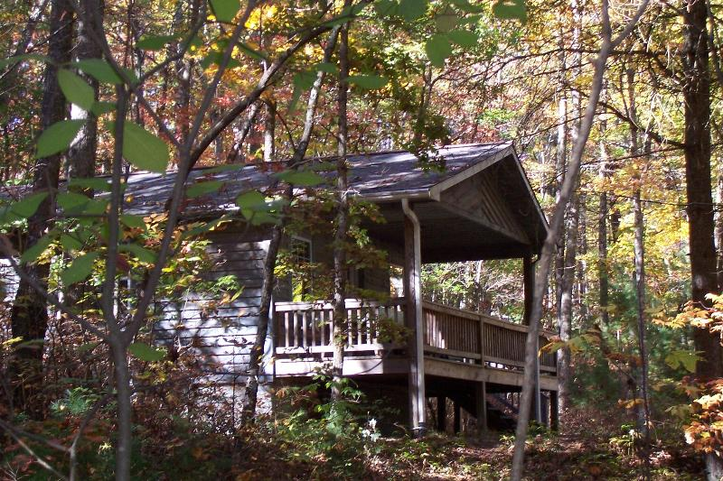 2 bedroom cabin in the woods - Cabins in Willoughby Woods   2  bedroom cabins - Brevard - rentals