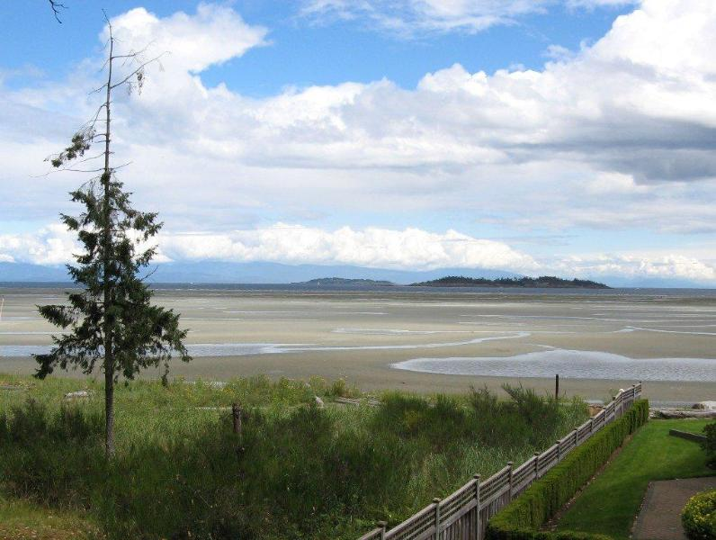 View from Lower Deck - Deluxe Rathtrevor Beachfront Vacation Home - Parksville - rentals