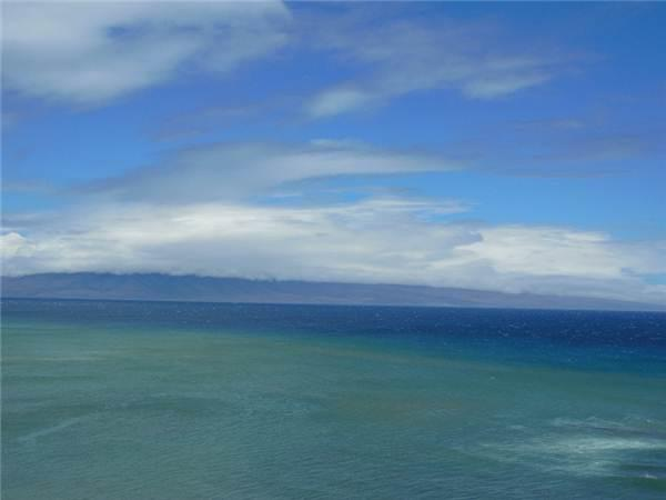 Sands of Kahana #391 - Image 1 - Lahaina - rentals
