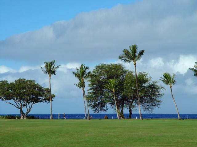 Maui Eldorado: Maui Condo J123 - Image 1 - Ka'anapali - rentals
