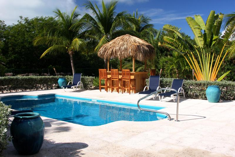 private pool and bar - BAREFOOT PALMS,  Kick Back and Relax Tiki Style! - Providenciales - rentals