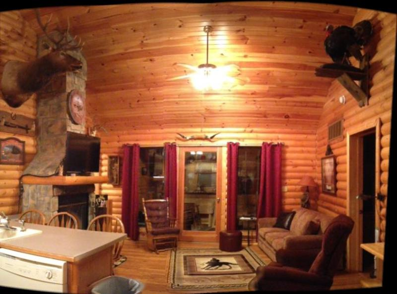This is an Awesome living room - Log Cabin,Wooded,Secluded,2 Jacuzzi,WiFi 1mile SDC - Branson - rentals