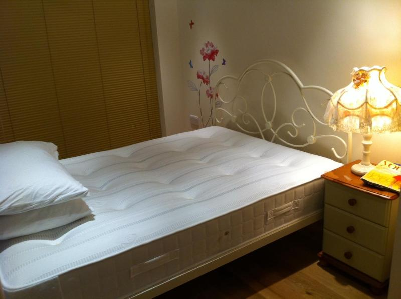 5* serviced apartment in central London 1bed 1bath - Image 1 - London - rentals