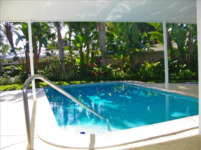 Narcissus Beach House - Image 1 - Clearwater Beach - rentals