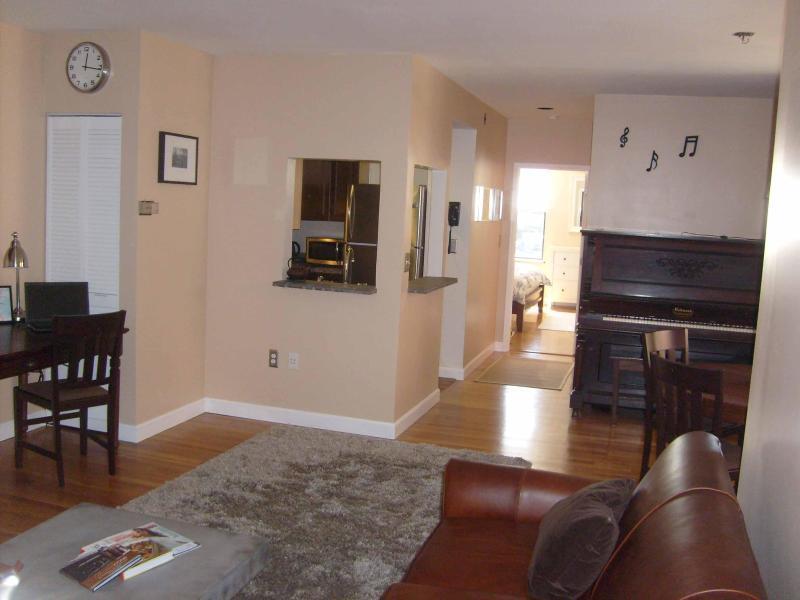 Full View - Modern Luxury Condo in Classic Brownstone Back Bay - Boston - rentals