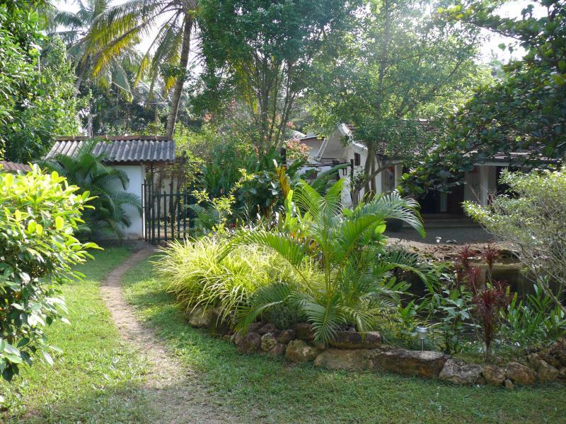 Garden - Teuflische Villa, Hikkaduwa - Hikkaduwa - rentals