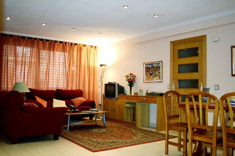 The sitting room leading to the terrace - Ample,comfortable apartment. Central Valencia.Wifi - Valencia - rentals