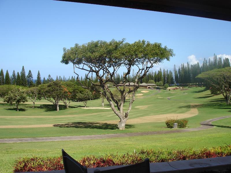one view from  villa - Luxury Kapalua Villa-April/May 2015 Special $298nt - Kapalua - rentals