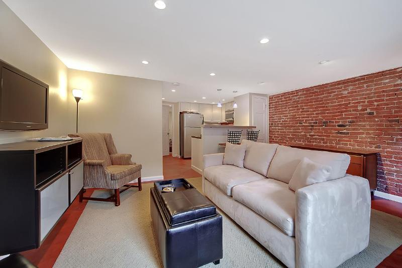 Living area with sleeper sofa - Wonderful Capitol Hill Location Sleeps Four ! - Washington DC - rentals