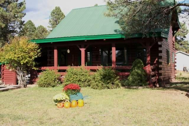 1 LIL-RABBIT - Image 1 - Pagosa Springs - rentals