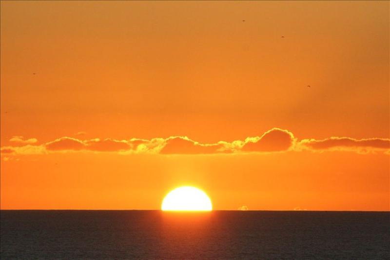 Every Sunset is Special - Ocean & Sunset Views, Walk to Beach. - Cardiff by the Sea - rentals