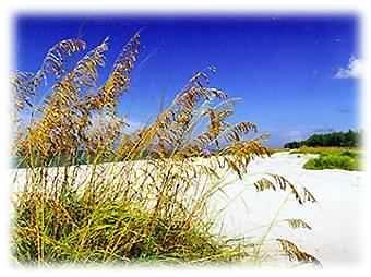 Bowmans Beach - Best Rates at Blind Pass on Bowmans Beach 2 bdrms - Sanibel Island - rentals