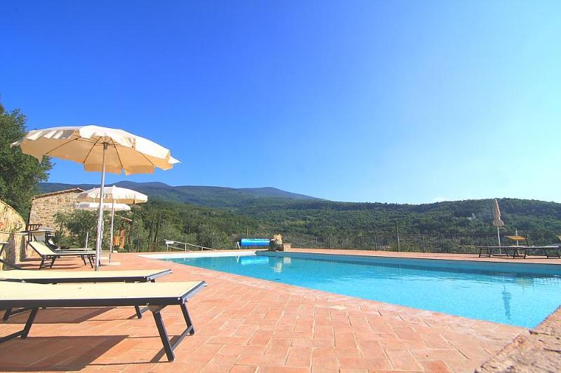 Pool - Castagnatello Country House - Ulivo unit - Seggiano - rentals