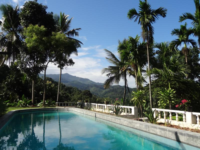 Pool by morning - Strathisla Knuckles Kandy guest house hotel Matale - Central Province - rentals