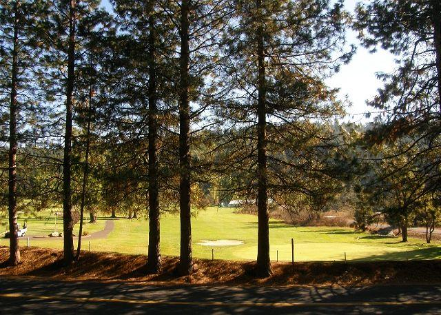 golf course - Relax in this classic Chalet style cabin walking distance from Fly-In Lake! - Arnold - rentals