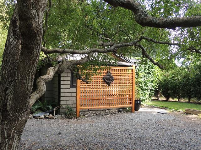 Willow Cottage - Westburn Seaside Cottages - Sooke - rentals