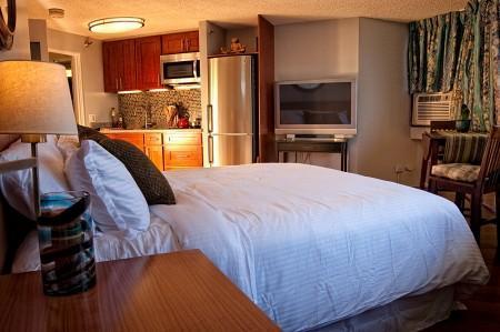 Luxury Studio With Ocean View. Free Parking! - Image 1 - Honolulu - rentals