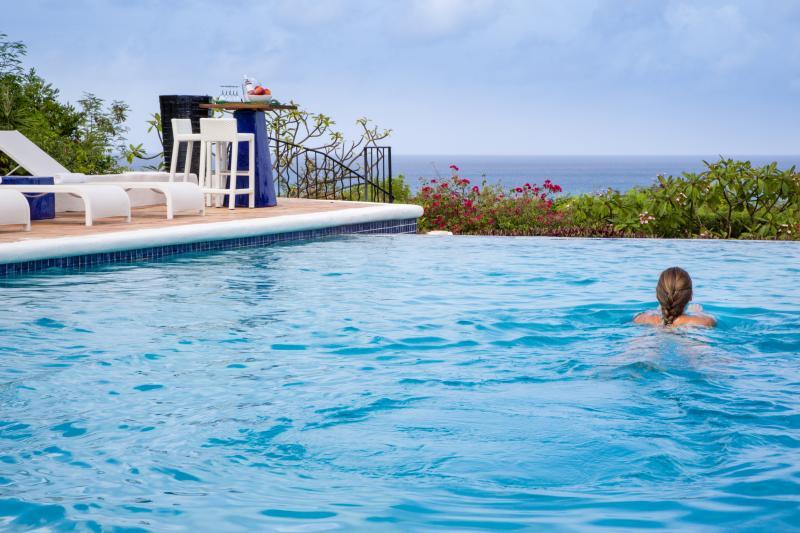 La Pergola : Mediterranean Style At It's Best, Sxm - Image 1 - Terres Basses - rentals
