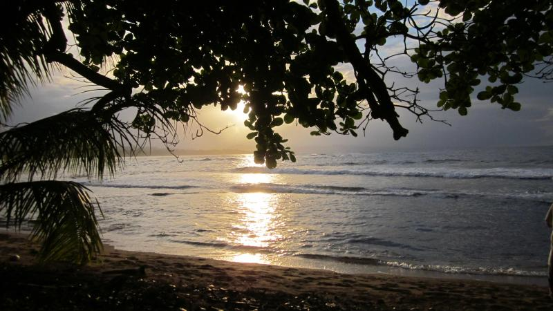 Sunset from front deck of house - Coral Reef House on the Beach - Manzanillo - rentals