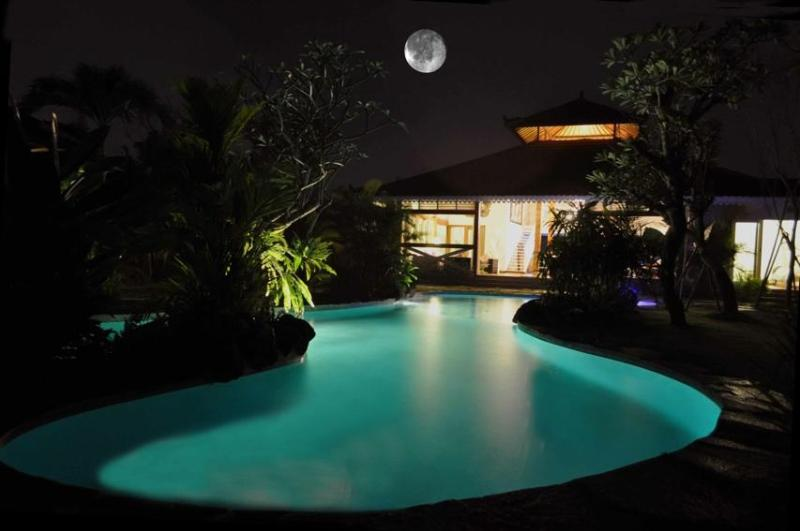 16 m lagoon swimming pool at night - Big family villa -  Seminyak Oberoi beach area - Seminyak - rentals