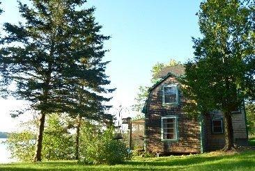Driftwood Cabin - Image 1 - Brooksville - rentals