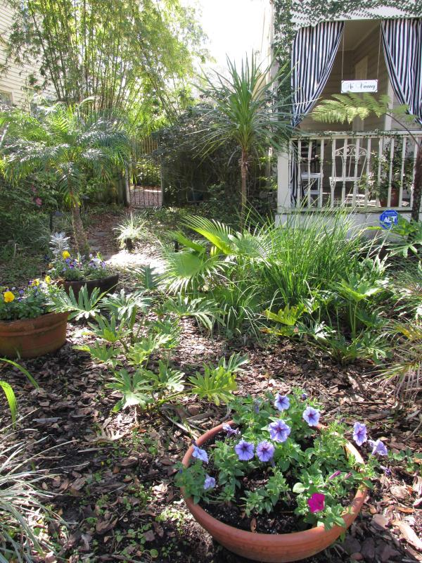 Front yard plantings change with the seasons. - This 3-bedroom property is no longer available - Saint Augustine - rentals