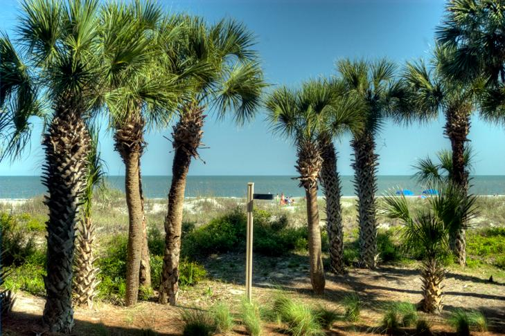 Captains Walk 401 - Image 1 - Hilton Head - rentals
