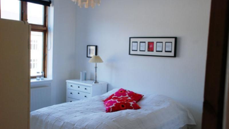 Hannovergade Apartment - Copenhagen apartment near Amagerbro metro - Copenhagen - rentals