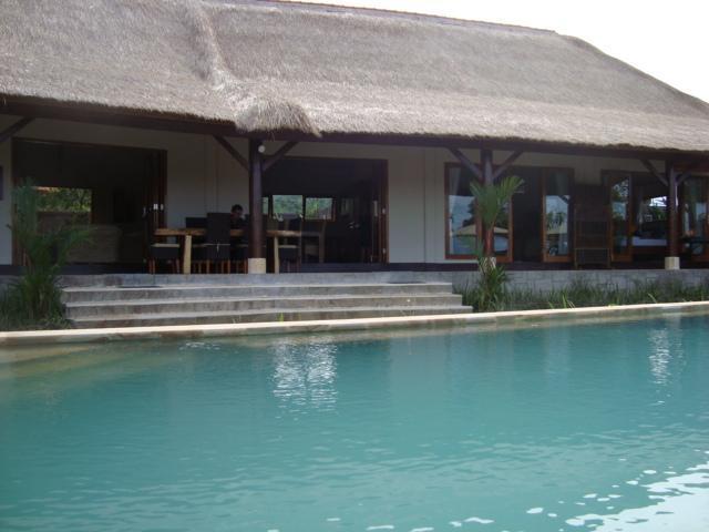 Pool and verandah - Luxury Bali Villa in Lovina - 4 bedrooms and pool - Lovina - rentals