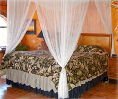 upper suite king bed - Loreto Playa Boutique B&B - Loreto - rentals