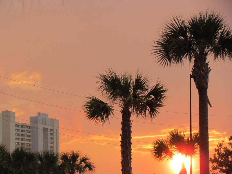 Taken from the local Walmart - Message me for the BEST Rate! Always a SPECIAL - Panama City Beach - rentals