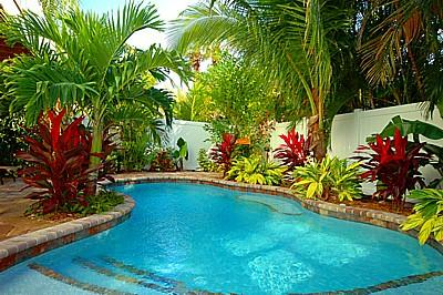 Lagoon Style Heated pool - Mango Breeze - 141 50th St - Holmes Beach - rentals