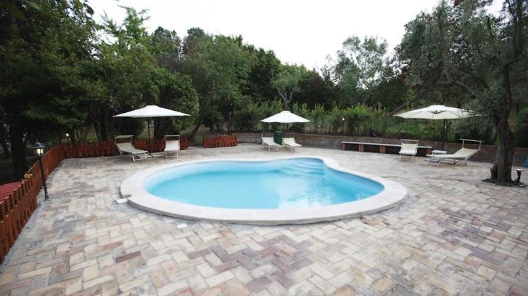 Swimming pool - Villa with private pool near Rome - Rome - rentals