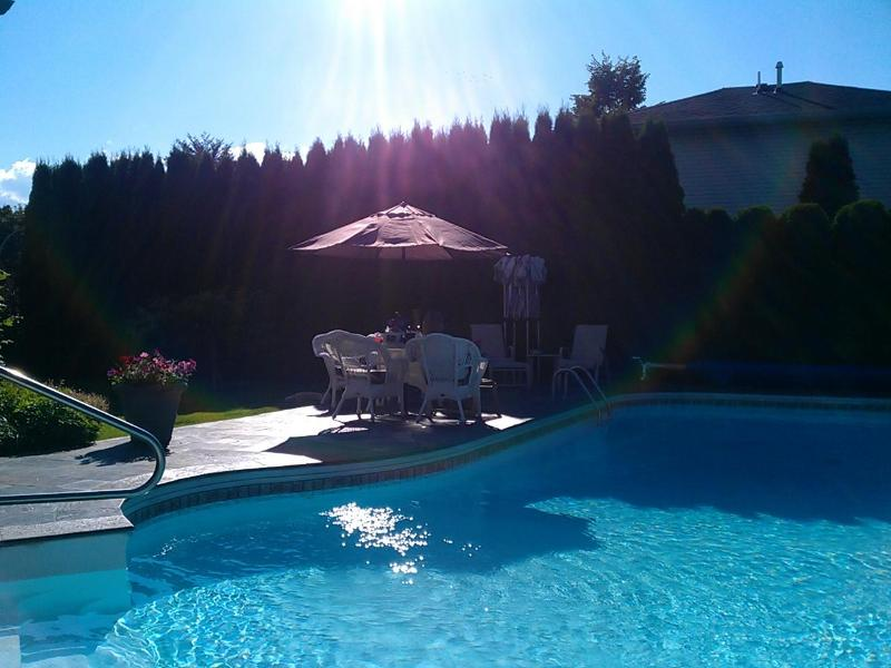 Private, Heated, Pool surrounded by Cedars - Tall Cedars Estate - Kelowna - rentals