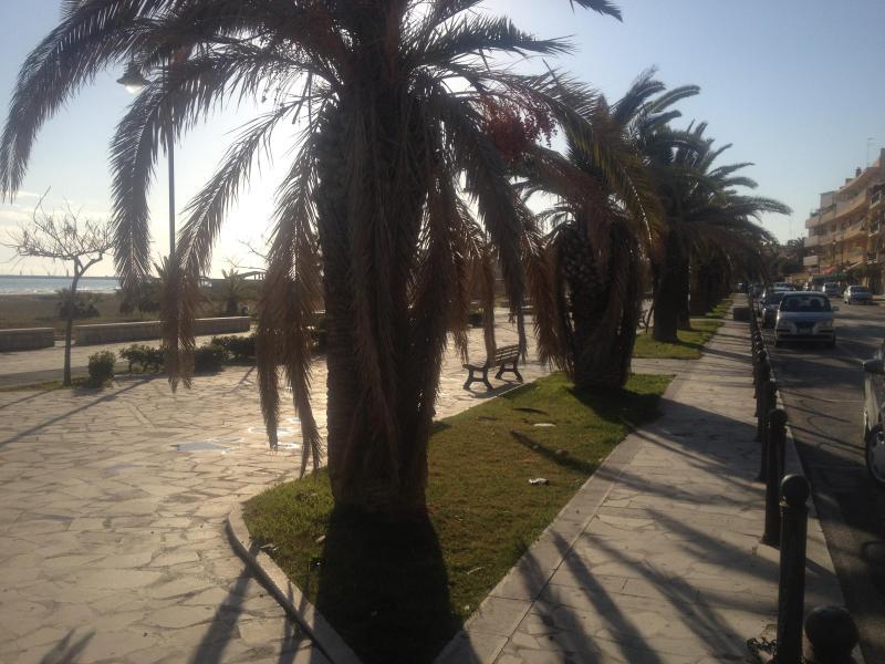 February 20th 2012 promenade - Pozzallo sea sun & surf in Sicilian Baroque heart - Pozzallo - rentals