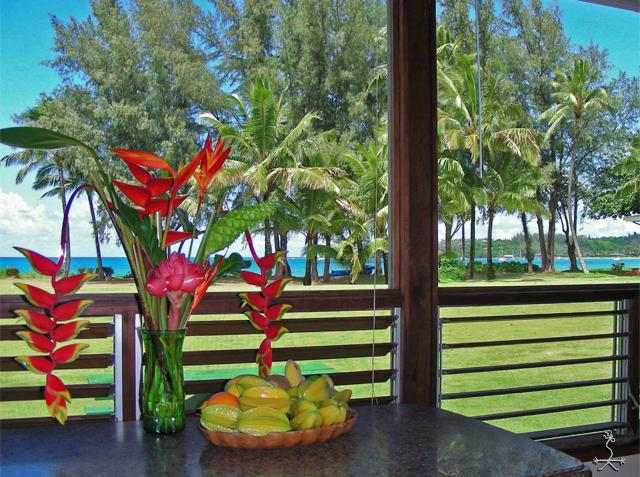 Hanalei Bay is just across the grass. See the water from your couch. - Hanalei Moon Beach Cottage - Hanalei - rentals