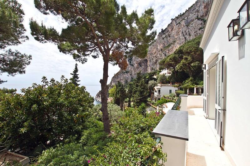 Villa Bouganvillea - Image 1 - Capri - rentals