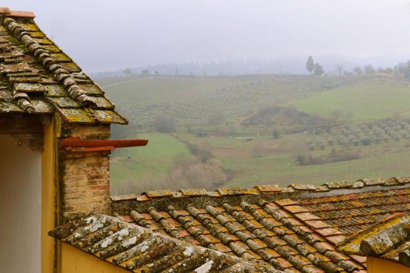 View from master bedroom - 3 bedrooms with garden in the heart of Chianti - Montespertoli - rentals