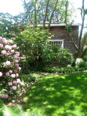 Beech Tree Cottage - Beech Tree Cottage - Sag Harbor - rentals