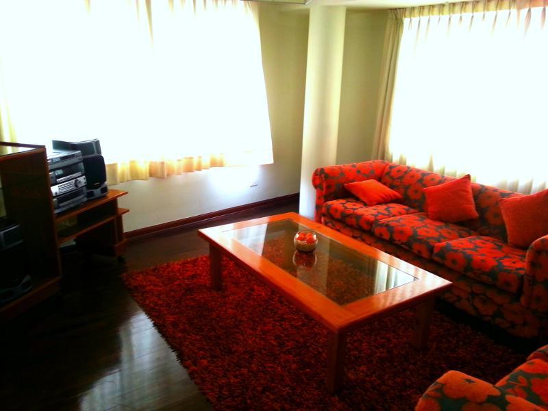 San Borja Apartment - Central Lima Location - Image 1 - Lima - rentals