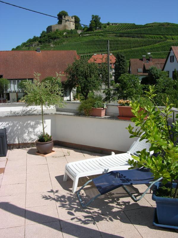 View from the terrace - Ferienwohnung im alten Schlossgarten - Kenzingen - rentals