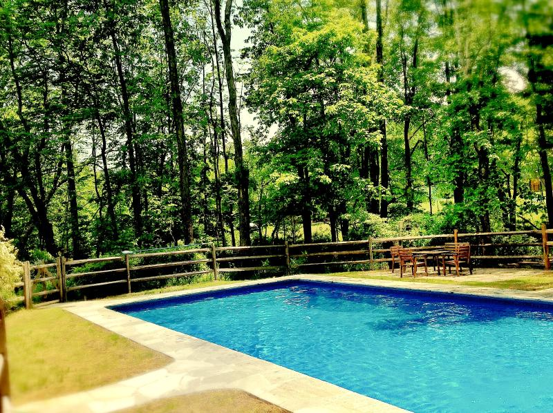 40 x 20 Heated Saltwater pool - Bearsville Retreat Fireplace Hot tub & Pool - Woodstock - rentals