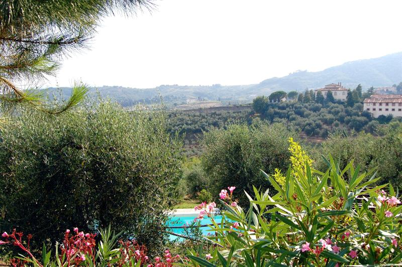 View from garden and pool - Villa Gioia - Enchanting Villa - Breathtaking View - San Quirico di Moriano - rentals