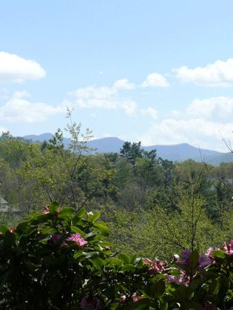 Asheville Mountain Retreat near ski slope - Image 1 - Weaverville - rentals