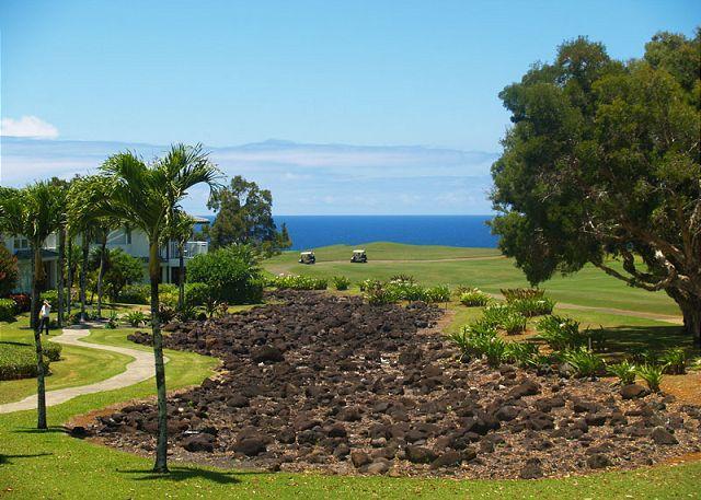 Ocean view! - Emmalani Court 524: Spacious, ocean view, air-conditioned, walk to beach. - Princeville - rentals