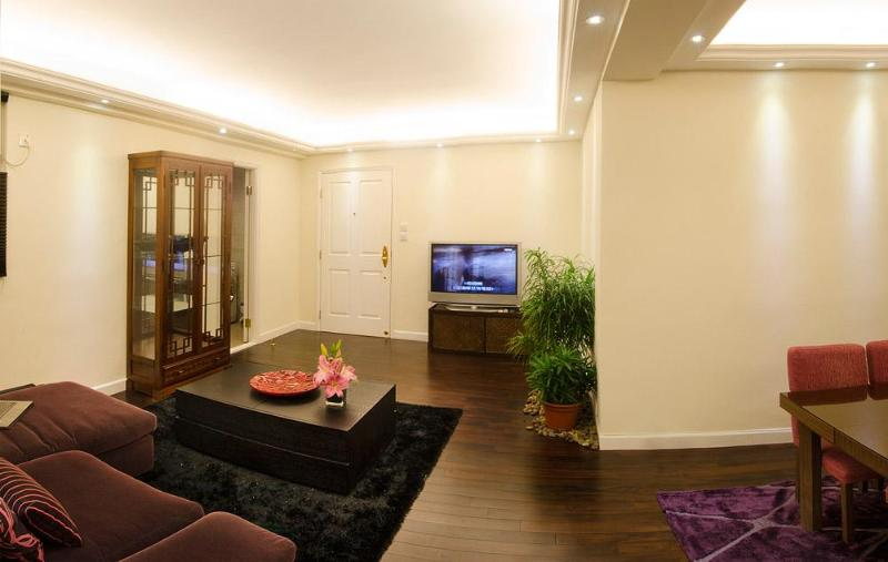 Spacious living room - Harbourview Executive luxurious 2 bedroom flat - Hong Kong - rentals