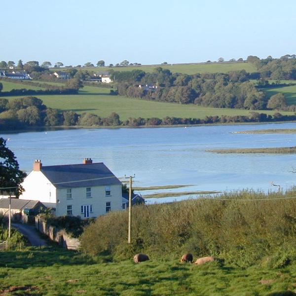Greysilk Farm - Ivy Cottage -  2 bedroom on Pembroke River Estuary - Pembroke - rentals